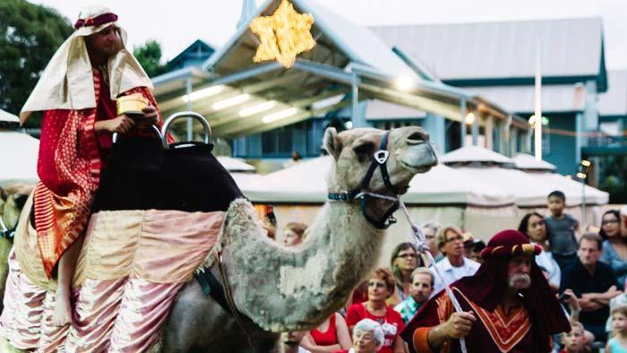 A Camel and Bethlehem Live Bundaberg